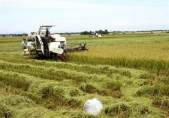 La formation professionnelle, gage de modernisation de l'agriculture