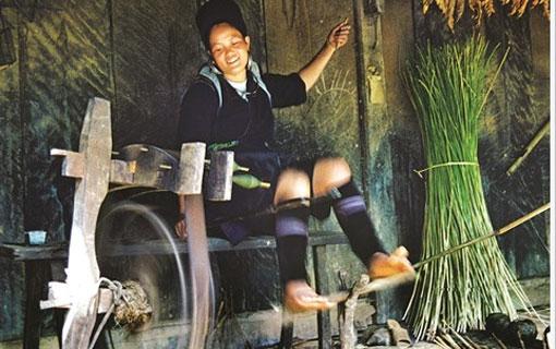 Le lin, les costumes et la tradition du tissage chez les H'mông