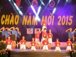 Le Vietnam fête le passage en 2015