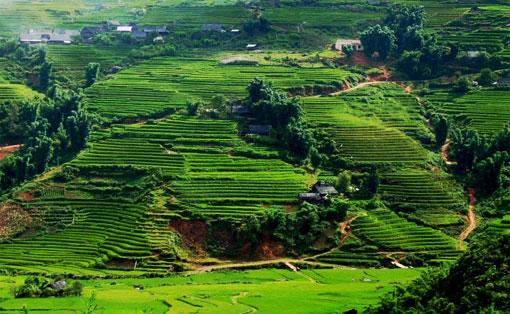 Explorations, Vietnam : Deux jours de trek autour de Sapa