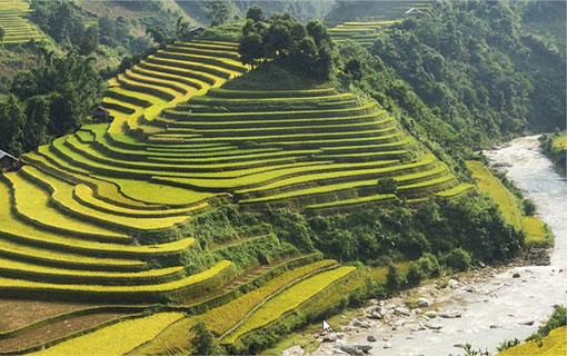 Le Vietnam, nouvelle destination évasion