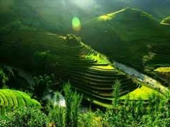 Yen Bai, une région située au Nord du Vietnam : un rêve pour les amateurs d'écotourisme
